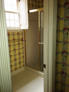 Colonial Shower Before
